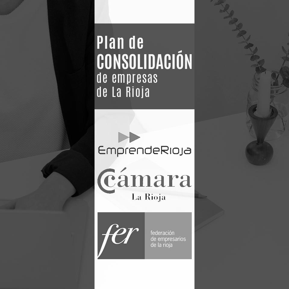 Plan de Consolidación de Empresas